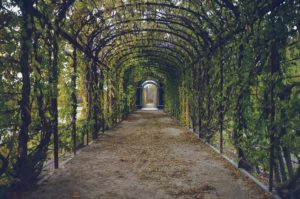 Gartendeko – Gartengestaltung Tipps
