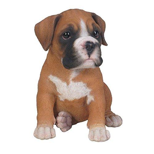 Hundebaby - Boxer Puppy - Vivid Arts