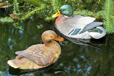 Schwimm Enten 2er Set Teichdeko