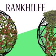 Rankgitter, Rankhilfe (13/50) - Gartenfiguren kaufen - Top 50 Kategorien (Liste)